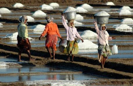 Working Womens In Salt Factory