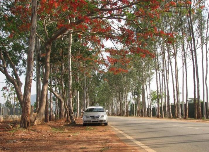 Bangalore Nandi Hills