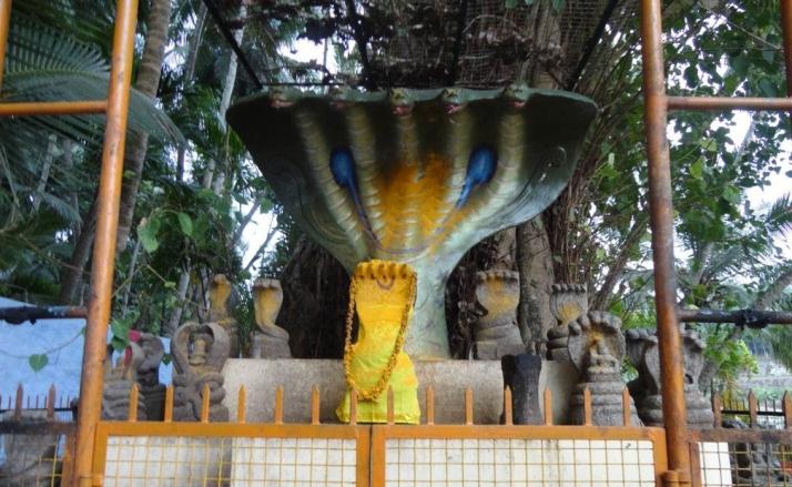 Nagaraja Temple Nagercoil