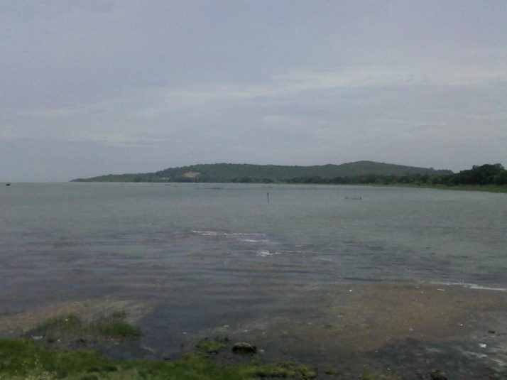 Ansupa Lake Bhubaneswar