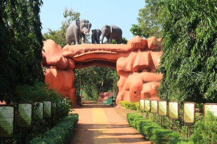 Chandaka Elephant Sanctuary Bhubaneswar