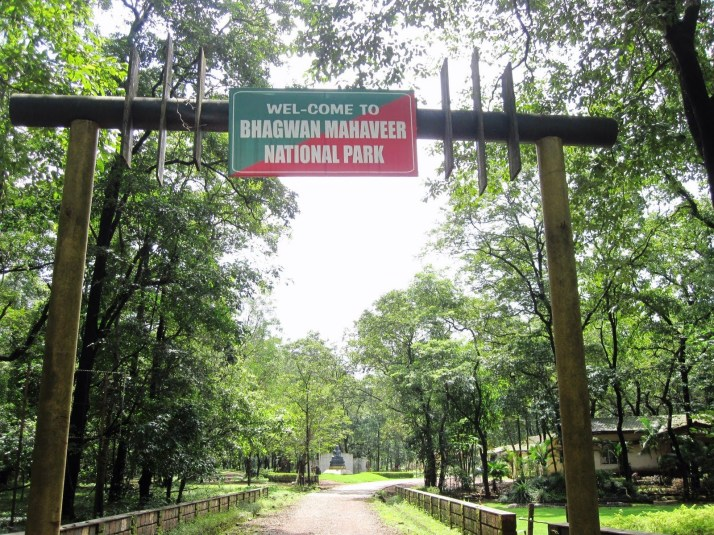 Bhagwan Mahavir Wildlife Sanctuary Goa