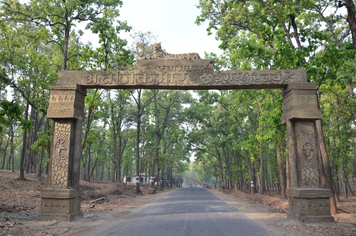 achanakmar wildlife sanctuary chhattisgarh